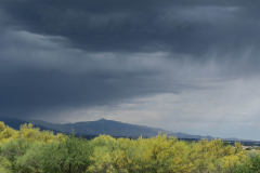 About To Rain In Sonoran Desert