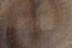 Abstract Illusion Tan And Brown