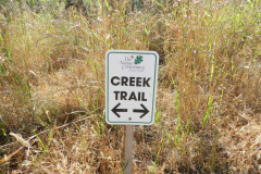 Creek Trail